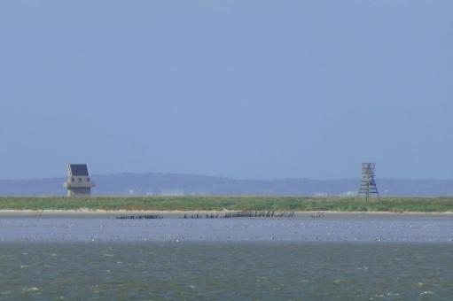 Vogeleiland Griend gezien vanaf de boot naar Terschelling, met baken en vogelwachtershuisje